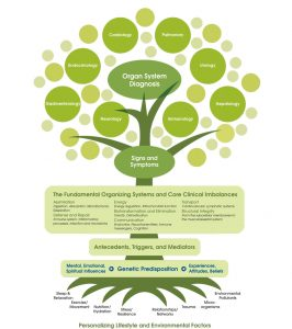 Nutrition Health Tree